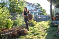 Since her spinal surgery, Liv Cannon has been able to work in the garden and play with her energetic dogs without the prospect of hours or days of pain. <br>(Julia Robinson/Kaiser Health News)