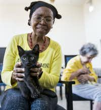 Constance Uzor (left) and Dottie Lemmond held kittens before the yoga class. The city's Prairie Paws Adoption Center has over 200 cats and kittens in need of homes.(Ashley Landis/Staff Photographer)