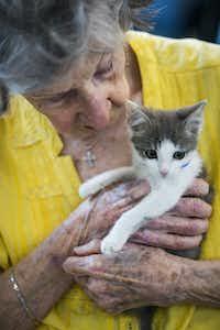 Dottie Lemmond held a kitten before the yoga class.(Ashley Landis/Staff Photographer)