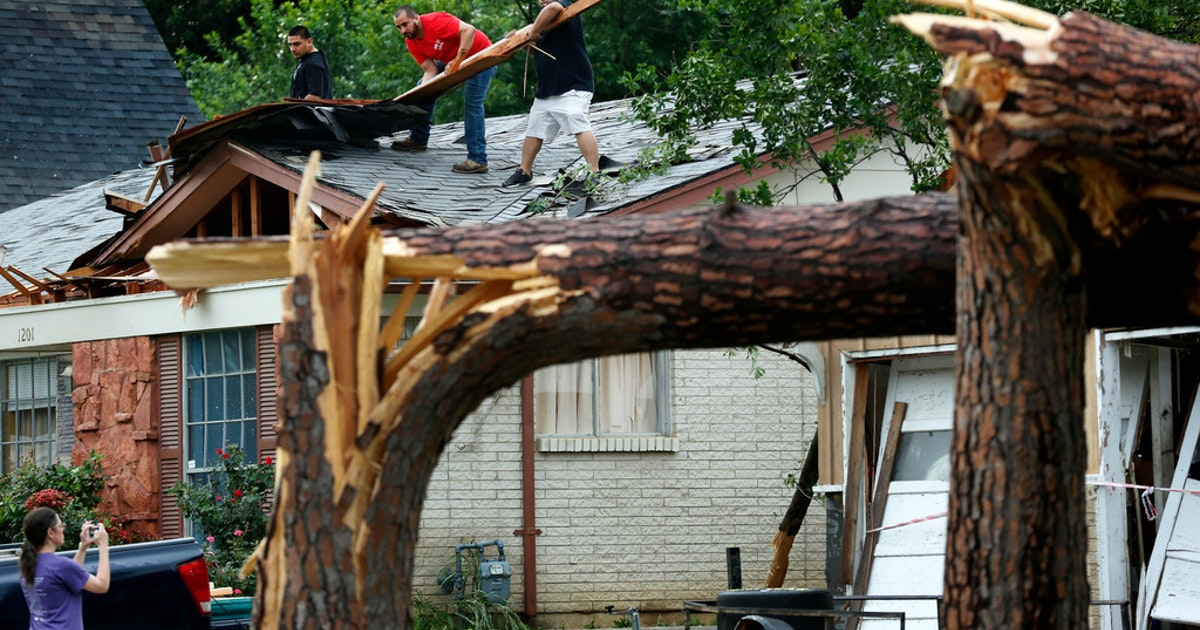 Why did we lose so many trees during recent storms? Tree and soil health could be a reason...
