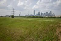 On the other side of the levee protecting The Bottom from the Trinity River is the Skyline Trail.(Shaban Athuman/Staff Photographer)