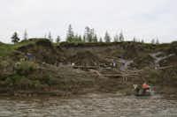 Vladimir Pitulko's team excavates the Yana River site, where the two milk teeth were found.(Elena Pavlova)