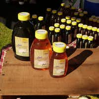 Beekeeper Bob Michel sells his Charis Honey Farm honeys — including a summer wildflower blend and local honey from Sherman and Rowlett — at the Rowlett Farmers Market.(Kim Pierce/Special Contributor)