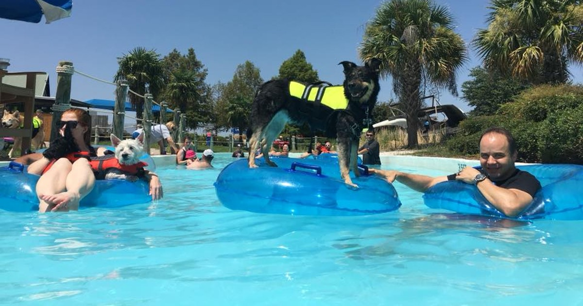 Dog About Town: Float with your pooch at the water park this weekend