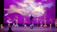 """Avant Chamber Ballet's """"Carnival of Animals"""" used no set, save for three circus stands, for its series of vignettes featuring cavorting birds, elephants and other creatures.( Kirsten Kearse  - Staff Photographer)"""