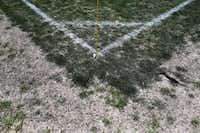 Worn areas are evident on the fields, such as this patch just out of bounds on the corner of a field at Harry Moss Park. Texas weather doesn't make upkeep any easier.( Nathan Hunsinger  -  Staff Photographer )