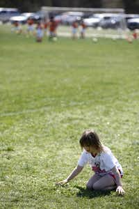 Mary Claire Leavy, 6, plays in the grass in between soccer games at Harry Moss Park in northeast Dallas. The city says most of the reductions in reservation hours at city playing fields can be handled by the leagues trimming practice play.( Nathan Hunsinger  -  Staff Photographer )