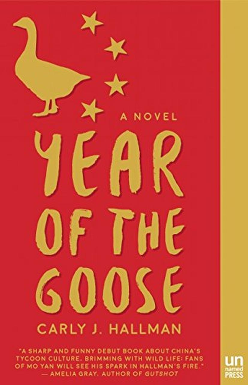 Fiction Year Of The Goose By Carly J Hallman Books Dallas News