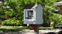 Little Free Library Number 8962 at 806 Dumont Drive in Richardson, TX