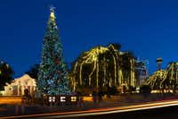 The annual lighting of the Alamo Plaza Christmas tree is a highlight of the holidays in San Antonio.( San Antonio Convention & Visitors Bureau )