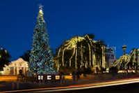 The annual lighting of the Alamo Plaza Christmas tree is a highlight of the holidays in San Antonio.( San Antonio Convention & Visitors Bureau )