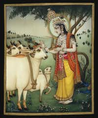 B. G. Sharma's watercolor Krishna ornaments a beloved cow is part of the exhibit.Crow Collection of Asian Art