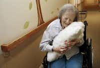 Dorothy Hartley, 89, hugs a robotic pet named Paro at a retirement community in Cupertino, Calif. The Japanese inventor hopes the pet will offer comfort to isolated seniors.( Gary Reyes  -  Bay Area News Group )