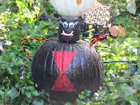 Come see pumpkins painted as all kinds of things, such as this black widow spider, at the Fort Worth Zoo's Halloween celebration Oct. 25-27.