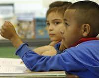 first grader jonathan vera perez raises his hand during a two way dual alternative teacher certification dallas