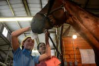 Sophie Wolf (left) and Peyton DeMarais groom American Xpress before a ride at Black Star Sport Horses.Rose Baca - neighborsgo staff photographer