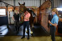 Head trainer Lisa Blackmon (left) watches Peyton, 16, put a bridle on Irnas, while Sophie, 11, looks on.Rose Baca - neighborsgo staff photographer