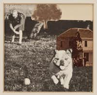 Roger Winter Bulldog, 1968, photo montage,