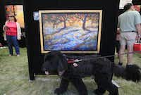 The Cottonwood Art Festival showcases works from more than 240 visual artists. Exhibited art will be available for purchase and will include paintings, sculptures, metalwork, digital pieces and more. Local bands will play at the Lakeside Courtyard, where you can also find food, and children can try out the ArtStop activities. Oct. 4-5 at Cottonwood Park, Richardson.( Ben Torres  -  Special Contributor )