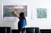 Vivian Tsou, chief operating officer  of Lelege USA, displays a rendering of the Long Lake development.(BRANDON THIBODEAUX - NYT)