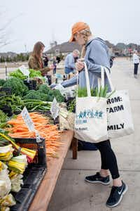 The Light Farms development in Collin County plans to hold a farmers market every Saturday. A community farm that will grow much of the produce is in the works.(Contributed - Republic Property)