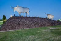 Two sculptures flank the Cypress Waters entrance on Belt Line Road. The 16-foot high metal longhorns were created by sculptor Peter Busby.( Billingsley Co. )