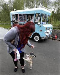 Dallas Dog Treat Food Truck