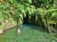 The entrance to Titou Gorge, Dominica, is barely visible. But exploring what lies behind the innocent looking natural gate is a reward for all adventurers.(Michaela Urban -  Michaela Urban )