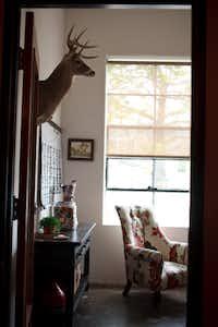 A trophy deer mount hangs in Liz Burnett's office; a faux stag hangs in Jeff Breazeale's.