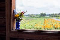 A vase of fresh cut flowers overlooking the flower fields at the Arnosky Family Farms( California Cut Flower Commission  )