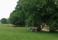 Adirondack chairs, picnic tables, and hammocks are tucked under the trees around the  one-time Army parade ground of Governors Island.