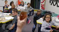 Carolyn Tackett holds up a bottle of dirty water in front of her class during the water filtering lab.( Staff photo by NATHAN HUNSINGER  -  DMN )