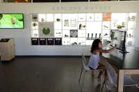 Mariana Hernandez, 8, plays on the interactive computer at the Rory Meyers Children's Adventure Garden at the Dallas Arboretum during a member preview on Aug. 22. The garden, which opens to the public Sept. 21, has 17 interactive galleries and more than 150 exhibits exploring everything from the planetary systems to hydropower.