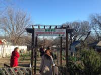 Did you know you're allowed to grow corn in Dallas? Members of the Dallas Plan Commission's Zoning Ordinance Committee explore a community garden in East Dallas during a tour of urban agriculture on Jan. 8, 2015.