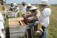 Hope Pettibon, right, looks on as Talbert shows scholarship students one of his home hives. The program for ages 12-17 provides students with training and materials to begin beekeeping.Photo submitted by CHRISTIE PETTIBON