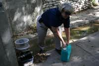 Coppell Environmental Health specialist Carol Primeaux prepares a mosquito trap near Bethel School Road. Primeaux returned to the trap the next day to see how many mosquitoes were caught.(Staff photo by MEREDITH SHAMBURGER)