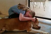 JULIANNA HUGS  one of the dogs at Best Friends Animal Sanctuary.(xxxxxx - xxxx)