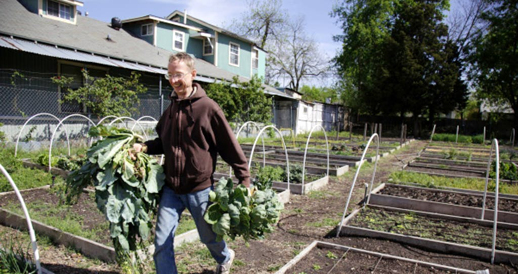 restaurant compost new life sprouts in old east dallas neighborhood thanks to