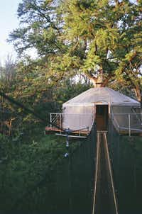 The Lofthaven II treehouse in Spicewood is perched high above a ravine in the canopy of an old-growth cypress.(Ramona Flume)