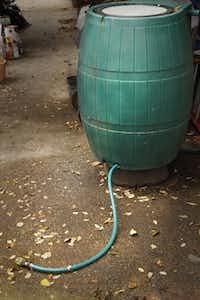 The plastic rain barrel - the Raincatcher 6000.