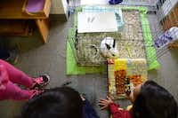 The Dallas North Montessori School students play with the class bunny, Oreo.Rose Baca