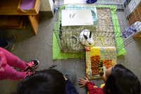 The Dallas North Montessori School students play with the class bunny, Oreo.(Rose Baca)