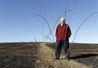 Alton Bowman, chairman of the Mound Foundation, said the recent fire on Flower Mound was a good thing because it will result in a better wildflower display this year.