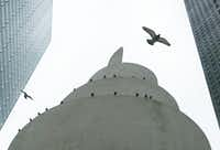 Pigeons find a haven for roost outside architect Philip Johnson's chapel at Thanks-Giving Square in Dallas. Amid the noise of the city, where can peace, silence and tranquility be found?