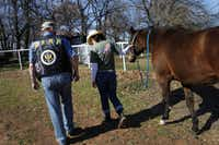 Robert MacTamhais, a National Guard veteran who was a medic in Iraq, and Brooke Knox, director of Rocky Top Therapy Center's Horses for Heroes program, walk with Mel during equine-assisted therapy at Rocky Top Therapy Center in Keller.