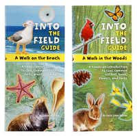 Kits to get kids exited about science, photographed June 20, 2014. Into The Field Guide, A Walk on the Beach by Laurie Goldman (left) and A Walk in the Woods by Emily Laber-Warren.Evans Caglage  -  Staff Photographer