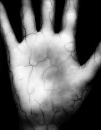 In less than two seconds, the palm scanner creates a high-resolution infrared photograph of the vein pattern just below the skin.