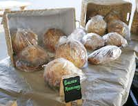 Salted rosemary sourdough bread from Balch Springs baker Debra Piedra is available at D's Sourdough in The Shed at Dallas Farmers Market.(Photos by Michael Ainsworth - Staff Photographer)