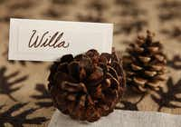 A place card idea using small pine cones as holders.