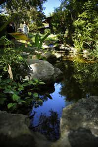 A narrow, recirculating stream around the courtyard collects rainwater and runs down a steep hillside to a koi pond.